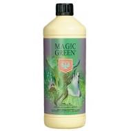 MAGIC GREEN H&G