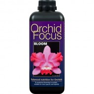 Orchid Focus Bloom Growth Technology