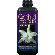 Orchid Focus Grow Growth Technology