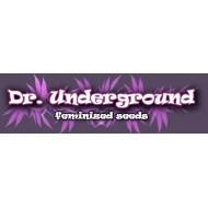 SURPRISE KILLER MIX - DR . UNDERGROUND